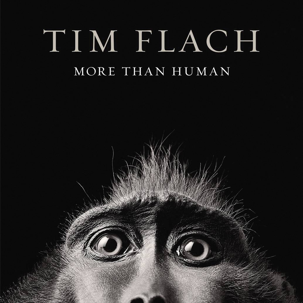 Tim Flach: More Than Human