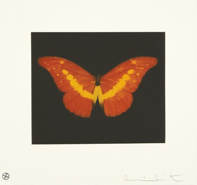 To Love (Red/ Yellow Butterfly)